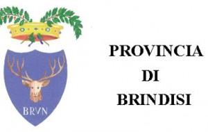 """Provincia di Brindisi: avviso pubblico per la designazione di un componente del Comitato Scientifico del """"CIASU"""""""