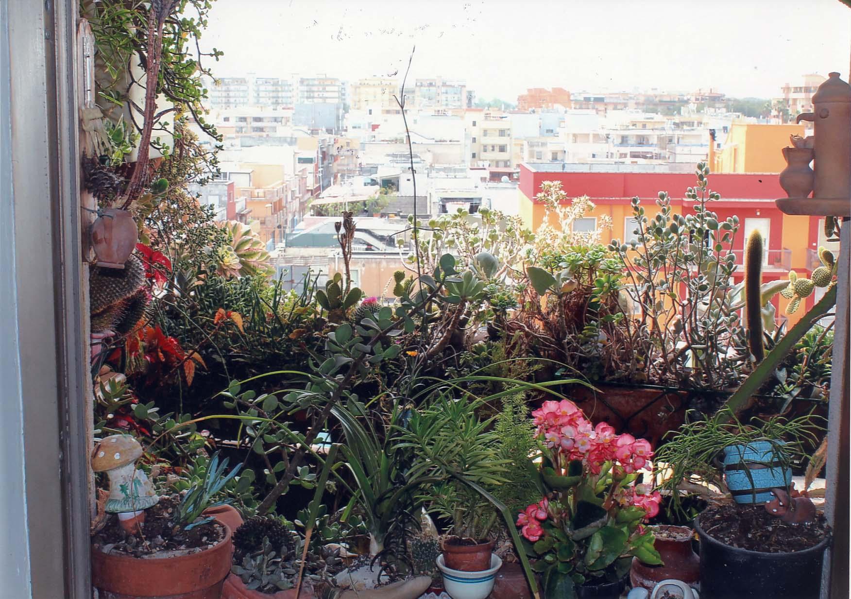 Arredo Balconi E Terrazze balconi e terrazze in fiore: ecco i vincitori del concorso