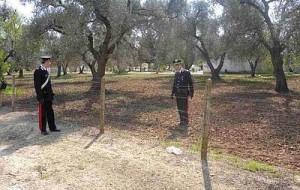 Carabinieri: diminuiscono i reati nelle campagna ma crescono gli arresti