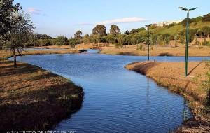 Comune di Brindisi: parchi riaperti dalle 6.00 alle 22.30