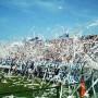 Oggi è nato il Brindisi Football Club: grande attenzione al settore giovanile