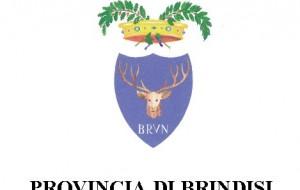 Provincia di Brindisi: attivata la procedura per la nomina del Presidente del collegio dei revisori