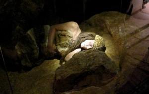 Pasqua e ponte del 25 Aprile al Museo di civiltà preclassiche ed al Parco Archeologico di Agnano
