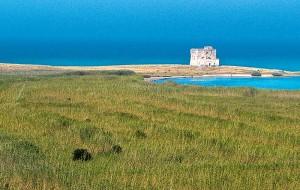 Torre Guaceto e il progetto START per la tutela della costa