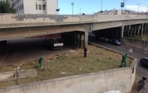 Intervento di pulizia in Via Tor Pisana, sotto il Cavalcavia De Gasperi