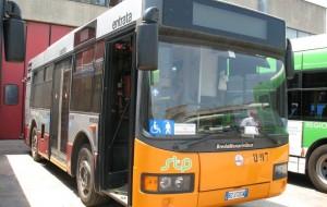 La STP cerca conducenti di autobus di linea: scopri i requisiti richiesti e dove inviare la domanda