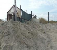 Spostano sabbia in zona protetta: denunciate due persone