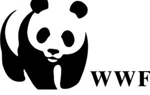 Giornate ecologiche 2019: domani il WWF al Bosco del Compare dalle 10 alle 17