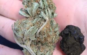 Beccato con hashish e marijuana: arrestato 30enne