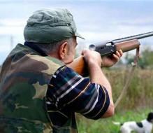 A caccia con armi illegali e richiami irregolari: arrestato 66enne