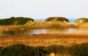 Giovedì 5 workshop internazionale sul Turismo Sostenibile nelle Aree Protette