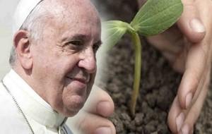 L'ambiente come lo vede Papa Francesco. Di Guido Giampietro