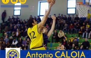 NPC Ceglie: arriva Antonio Caloia