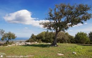Museo e Parco Archeologico di Ostuni: concerti, guide gratuite e aperture straordinarie per le festività pasquali
