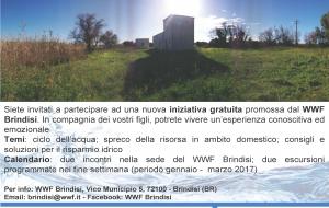 Acqua in tutte le sue forme: un nuovo percorso di educazione ambientale del WWF Brindisi
