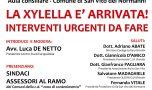 """Domani 23 a San Vito la conferenza dal titolo """"la xylella è arrivata: interventi urgenti da fare"""""""