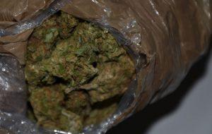 In casa aveva oltre una tonnellata e mezzo di marijuana: arrestato albanese a Brindisi