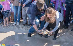Nella Giornata della Liberazione due tartarughe sono tornate alla vita
