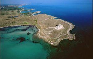 Giornata Mondiale degli Oceani: iniziative del WWF a Torre Guaceto