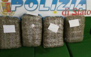 La Polizia di Stato sequestra 21 chili di marijuana