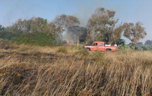 Incendio nella Riserva naturale di Torre Guaceto: Legambiente Puglia esprime solidarietà al consorzio di gestione