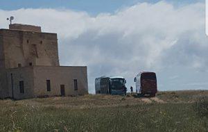"""Due autobus nella riserva: """"ancora uno scempio a Torre Guaceto"""""""