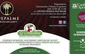 Cantine Aperte: vino, prodotti tipici e solidarietà per Cantine Due Palme