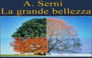 Cambio di stagione? Di A.Serni