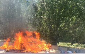 Rifiuti a fuoco: le fiamme minacciano il Dog Park di Via Dalmazia