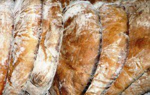 Notte Verde a Cisternino: si celebra il matrimonio tra pomodoro Regina e pane di Monte Sant'Angelo