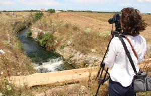 """Il documentario """"Acqua reale"""" della regista brindisina Paola Crescenzo al Premio Tekné"""