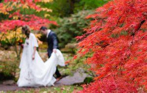 Gli italiani si sposano di più e 3 coppie su 10 scelgono l'autunno per farlo. Ecco perché