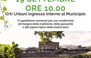 "Martedì 19 a Ceglie ""Orti urbani in vendemmia"""