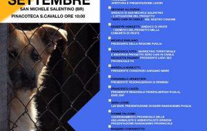 Zero cani in canile: parte anche a Brindisi la campagna delle associazioni animaliste