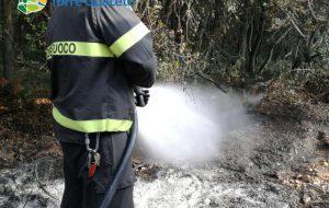 Un altro incendio doloso colpisce la Riserva di Torre Guaceto