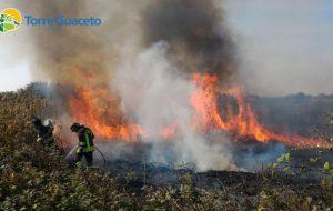 Ennesimo incendio a Torre Guaceto: è il sesto in cinque mesi