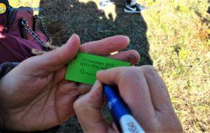 Giornata nazionale degli alberi: per un giorno gli studenti diventano operatori di Torre Guaceto