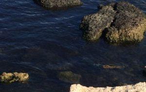 Scarico di acque nere nel Porto di Brindisi: denunciati vertici di Enel Produzione