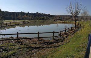 Venti di burrasca: a Brindisi chiusi cimiteri e parchi