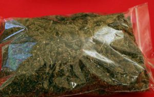Trovato in possesso di 48 grammi di marijuana: denunciato