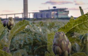 """Oggi all'Impero """"Vento di soave"""", il film sul conflitto tra grande industria e territorio girato a Brindisi"""