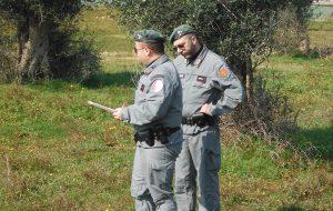 Divulgazione delle buone pratiche nella lotta alla Xylella Fastidiosa: si raccomanda la massima attenzione