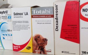 Usava medicinali rubati dall'Ospedale di Brindisi: nei guai un veterinario