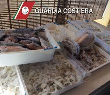 La Guardia Costiera sequestra prodotti ittici privi di tracciabilità
