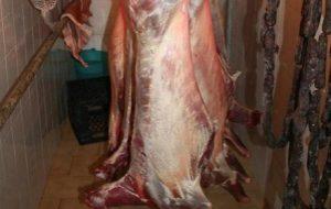 Anidride solforosa dentro le carni: denunciato macellaio