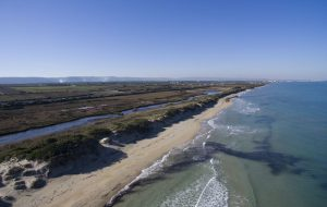 Il Parco Dune costiere presente alla 22.ma Mostra Mediterranea del Turismo Archeologico