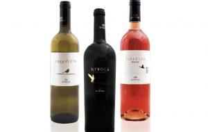 Due vini di Brindisi di Tenute Lu Spada premiati al concorso nazionale di Vinoway