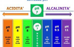 Sport e Salute: Perché è importante che il sangue abbia un pH alcalino? Di Rocco Palmisano
