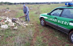 Rifiuti in azienda zootecnica: intervengono i Carabinieri Forestali