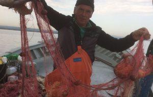 Fondo europeo per gli affari marittimi e la pesca: disponibili i primi 200mila euro per l'avvio del Piano di Azione Locale del GAL Alto Salento 2020